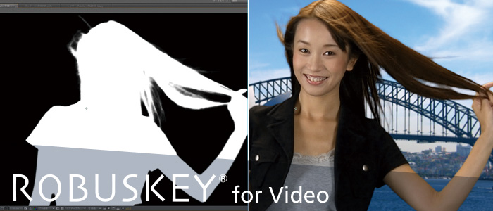 ROBUSKEY for Video